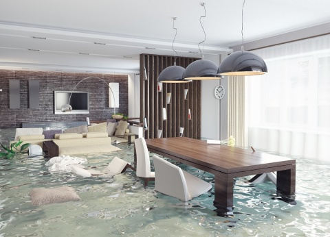 What to Do After a Flood - Solutions for Homeowners Picture